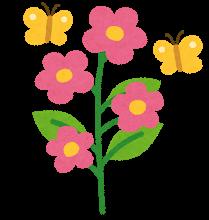 flower_seichou8