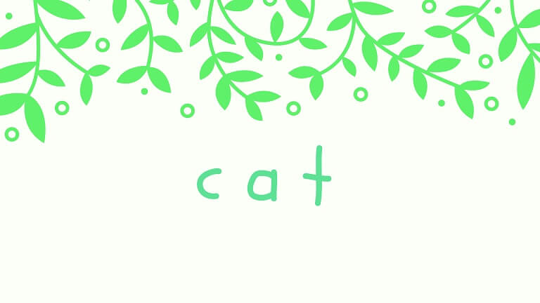 eyecatch-cat