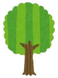 tree_seichou08