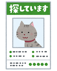 yukuefumei_pet_cat