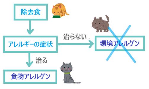 jokyoshoku3
